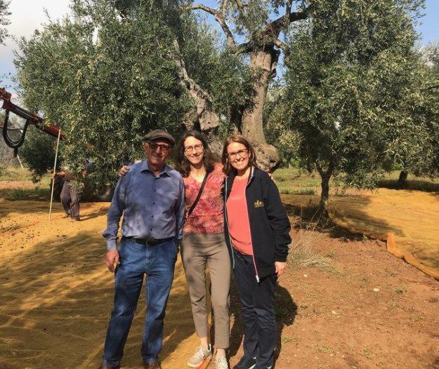 Puglia Extra Virgin Olive Oil Organic