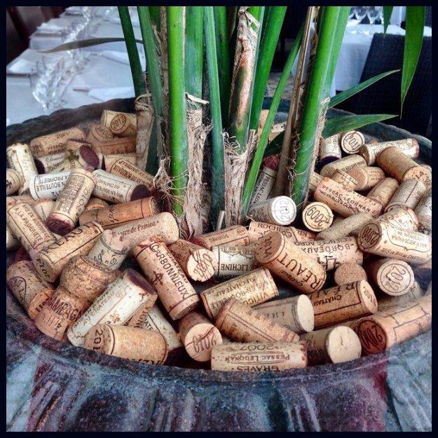 cork planter