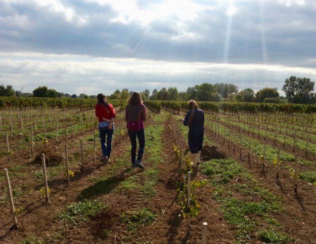 Monfaucon Estate Dawn Jones-Cooper Bordeaux biodynamic