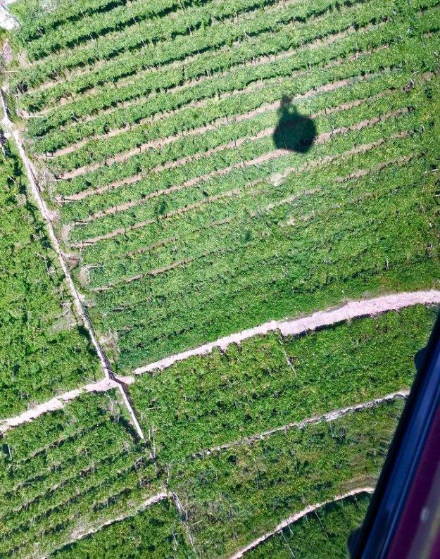 funicular Soprabolzano Alto Adige vineyards