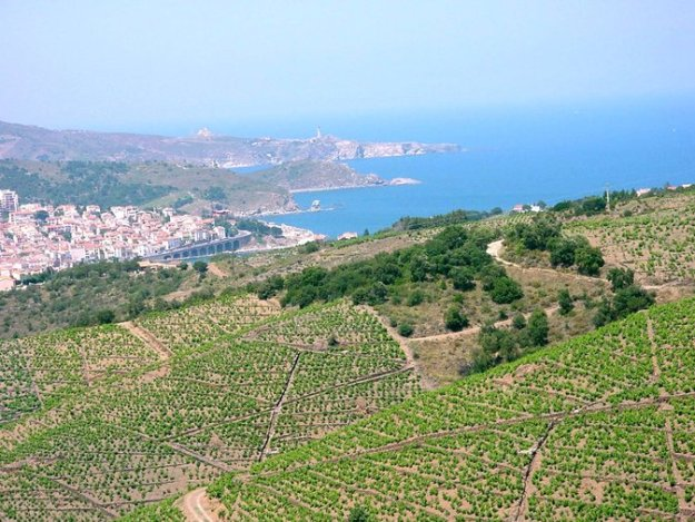 Roussillon Banyuls