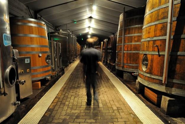 wine barrels domaine saint nicolas fiefs vendeens