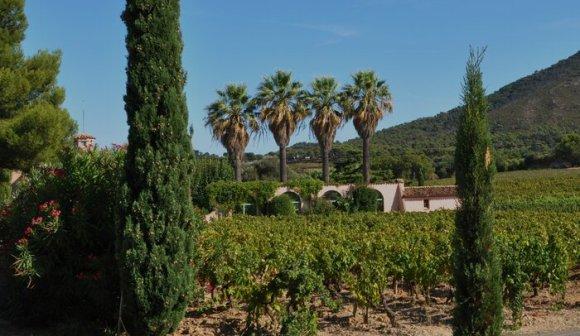 Clos Cibonne Côtes de Provence
