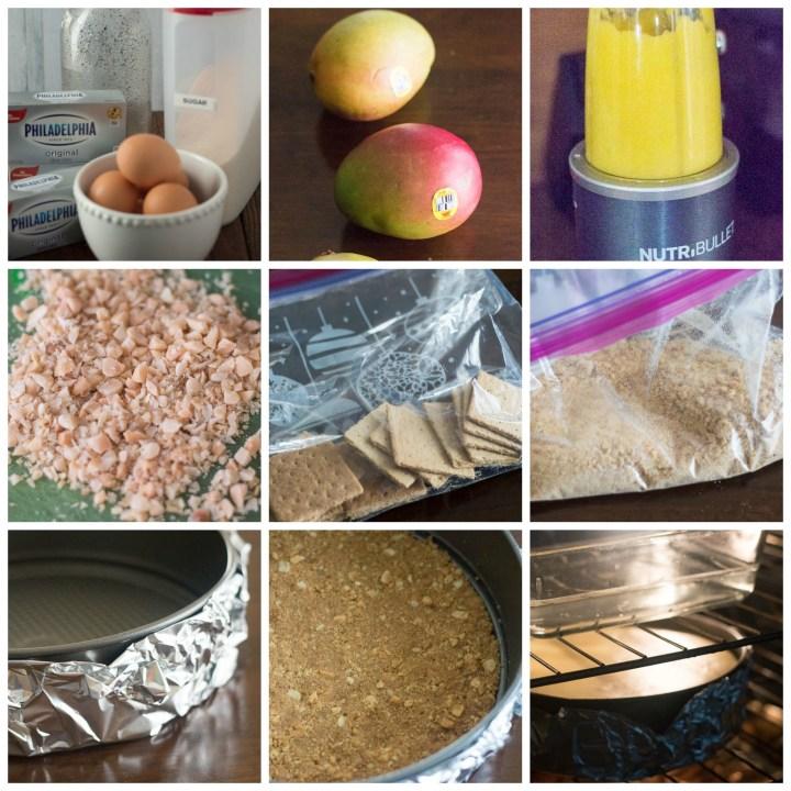 How to Make a Mango CheeseCake