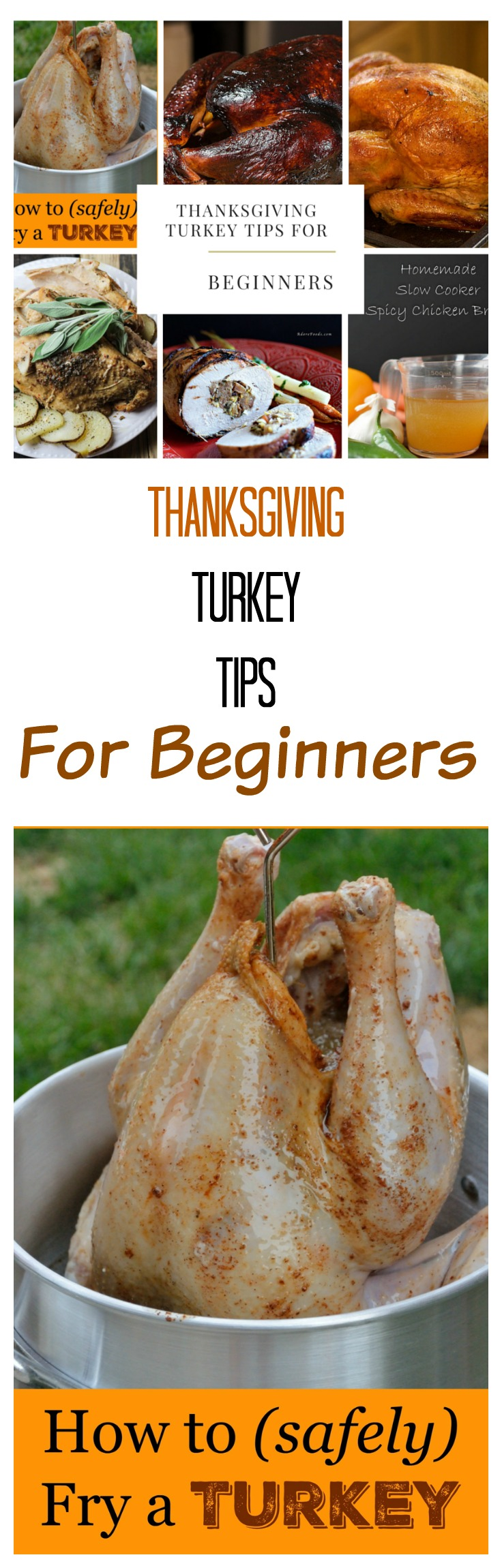 Thanksgiving Turkey Tips for Beginners