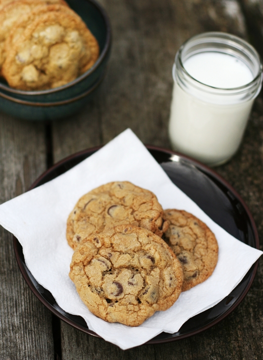 The Best Chocolate Chip Cookie Recipe EVER!