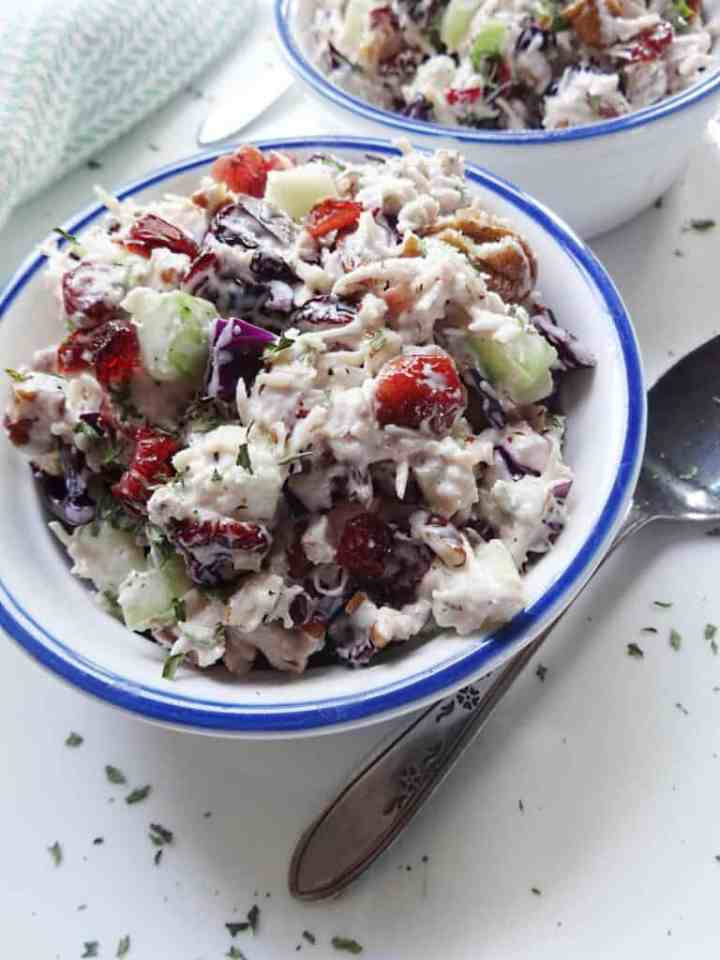 Turkey Salad Recipe with Cranberries