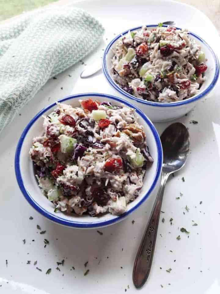 Turkey Salad Recipe with Cranberries