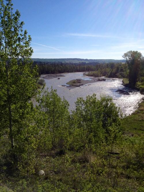 Elbow River Spring 2013