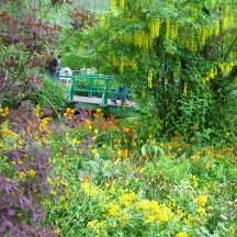 Colour palette of Monet photo - Karen Anderson