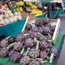 fresh artichokes photo - Karen Anderson