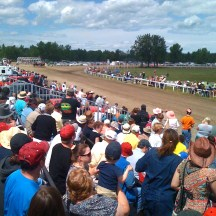 Millarville Races - photo - Karen Anderson