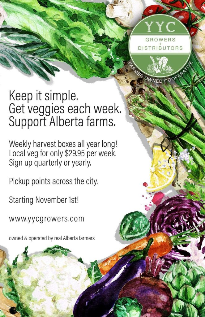 a poster about a winter vegetable box available through YYC growers and distributors