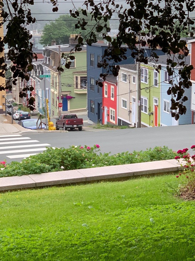 Brightly painted homes in St. John's, NL
