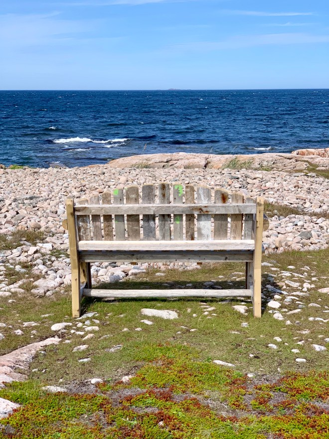 A view to the North Atlantic, Fogo Island, NL - Karen Anderson