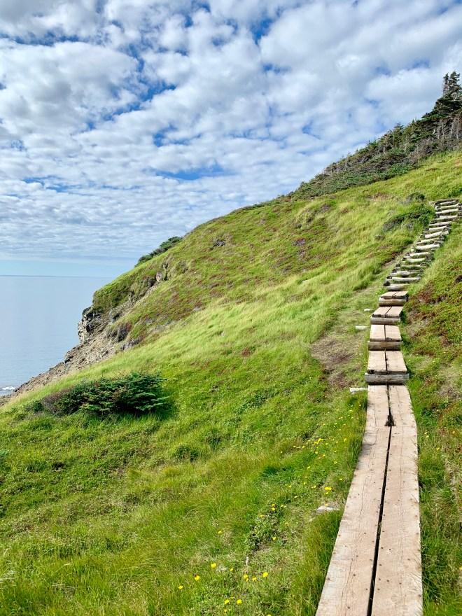Steep part of Skerwink Trail, NL