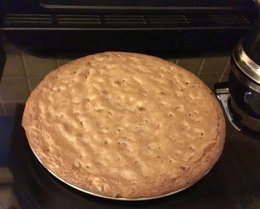 The baked, giant cookie