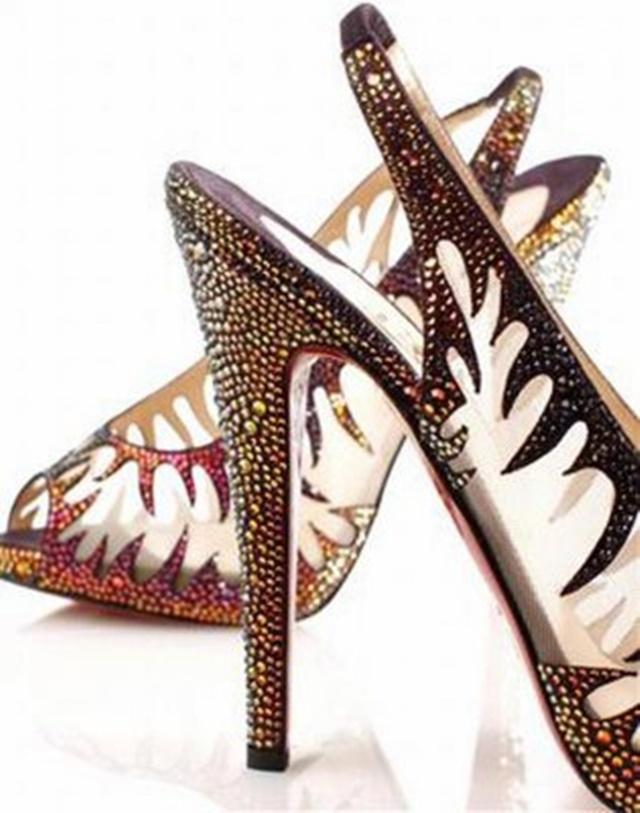 cipele 6