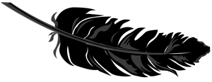 Savvy Content Black Feather Illustration