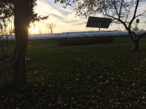 10. Our solar panel soaks up the last of the fall sunshine.
