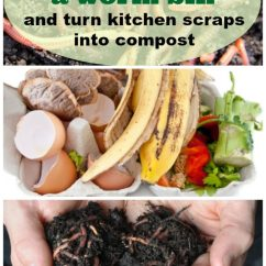 Kitchen Compost Container Cost Of Cabinets How To Build A Wormbin