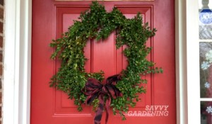 A quick boxwood wreath