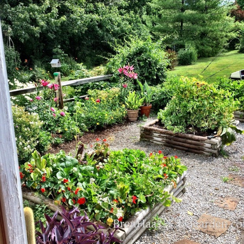 A glimpse at some of Brenda's raised veggie & herb beds.