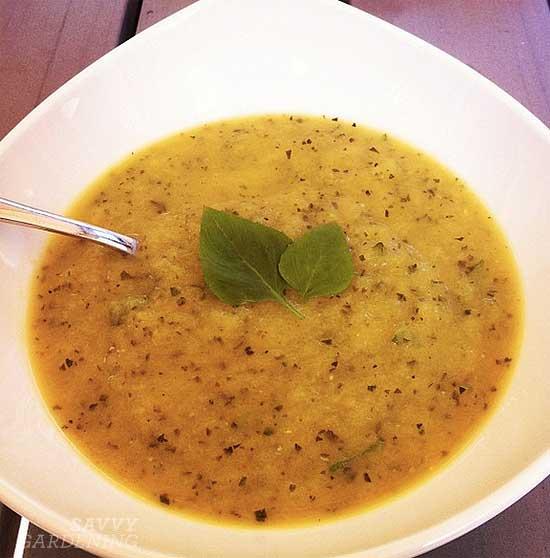 Zucchini recipes: A delicious zucchini soup