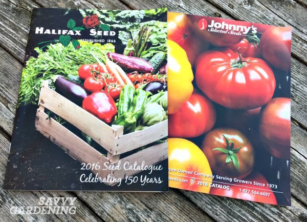 Seed Catalogs, Niki's favorites.