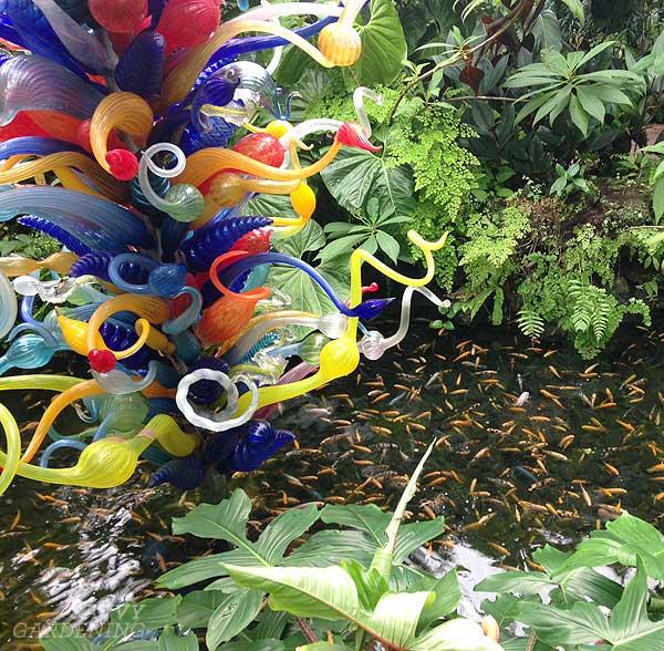 SG travels: Fairchild Tropical Botanic Garden in Florida