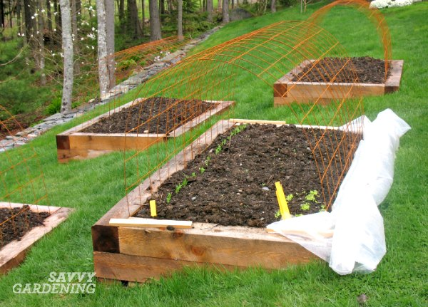 One of the best vegetable gardening tips is that a veggie garden doesn't have to be large to be productive.