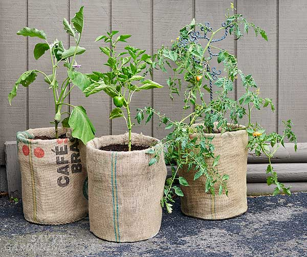 Make Your Own Raised Garden