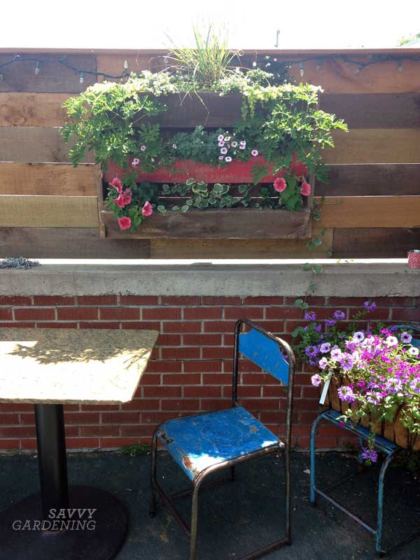 upcycling garden ideas: pallet