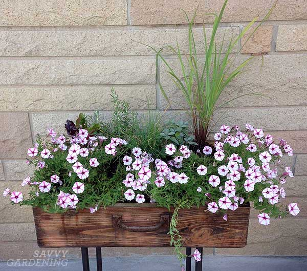 upcycling garden ideas: suitcase