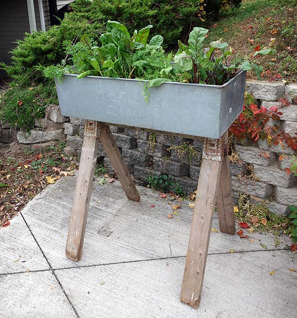 upcycling ideas for the garden: washbasin