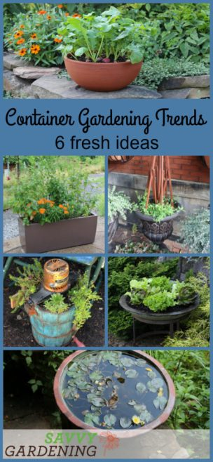 Use these six fresh container gardening trends to spruce up your garden and fill your plate.