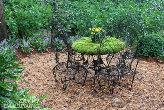 The 6 New Trends In Container Gardening