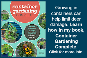 Gardening in containers with deer.