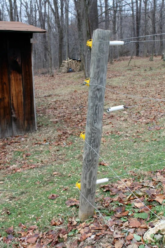 Deer Proof Gardens 4 Sure Fire Ways To, How To Keep Deer Out Of Vegetable Gardens