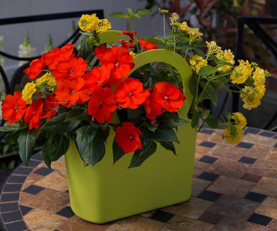 Use a gift bag as a container for flowers