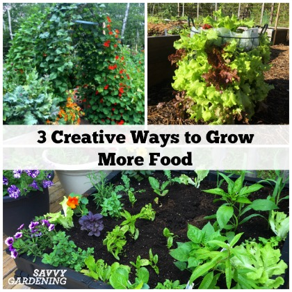 Get inspired with these 3 creative ways to grow more food! (AD)