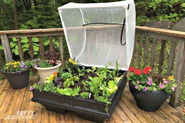 The Vegepod from Lee Valley Tools is a four-season planter that turns your deck or patio into a food factory.