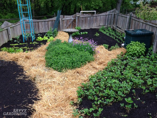 Digging Into Mulches Types Of Landscape Mulch For Your Garden