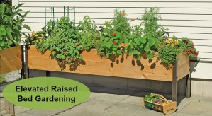 Elevated raised bed gardening is a great way to grow! (AD)