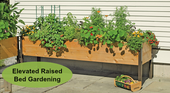 Elevated Raised Bed Gardening The, How Do You Make An Elevated Garden Bed With Legs