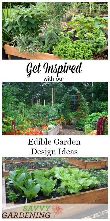 Get Inspired With These 5 Edible Garden Design Ideas!