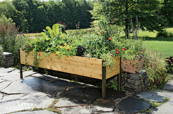 Sensational Elevated Raised Bed Gardening The Easiest Way To Grow Cjindustries Chair Design For Home Cjindustriesco