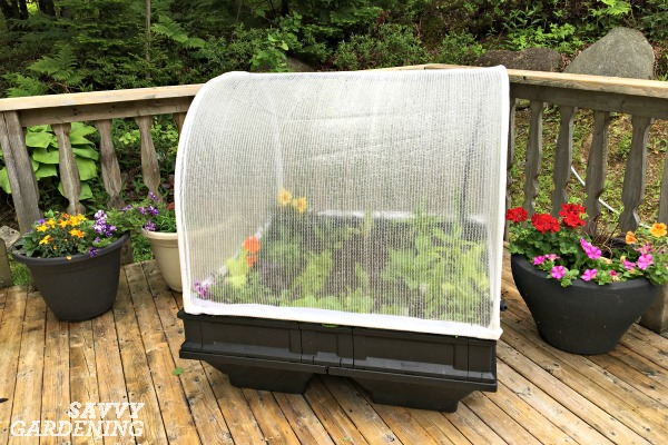 The hinged cover of a Vegepod protects from harsh weather and pests. (AD)