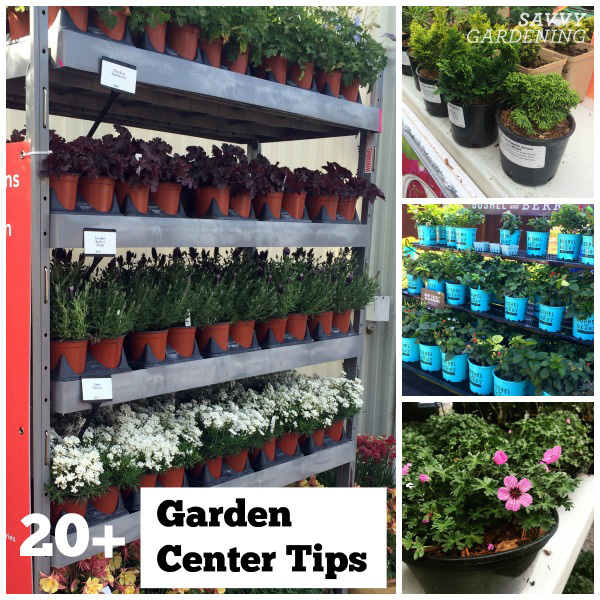 Plant nursery and garden center tips
