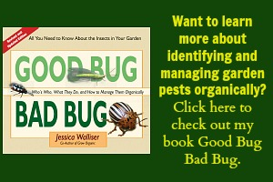 Good Bug Bad Bug book